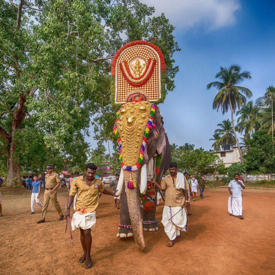 Trissur Pooram next festival May 13, 2019