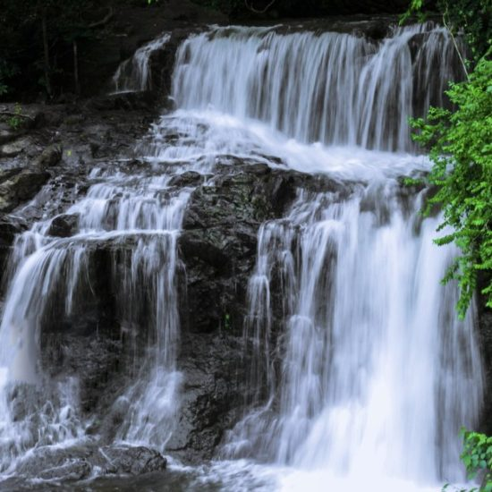 Ariyil Waterfalls Kannur